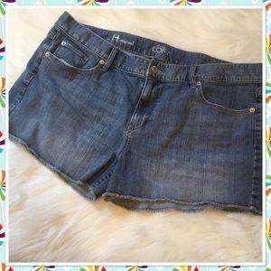 LOFT Outlet Denim Shorts - 14